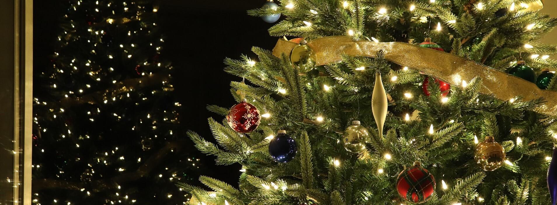 Image 4 – 2019 12 25 Christmas tree
