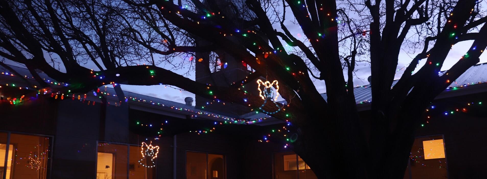 Image 2 – 2019 12 25 Christmas lights