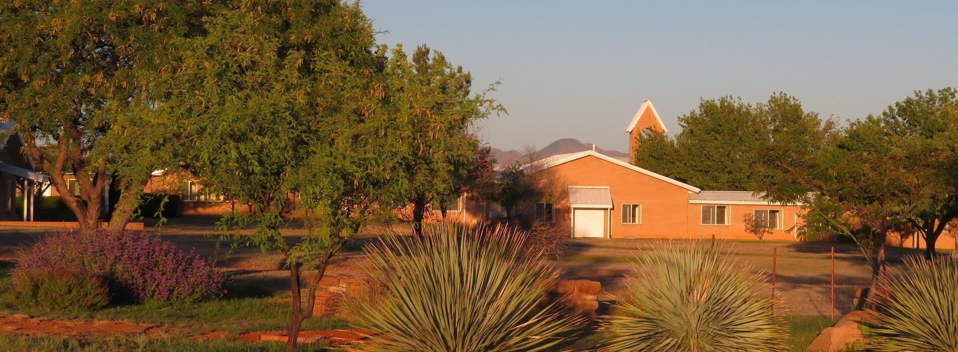 Image 3 – 2020 05 25 cemetery garden