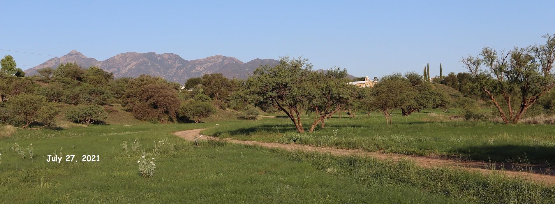 2021 07 24 abbey view green